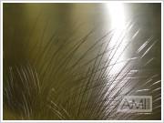 grafika steblá trávy