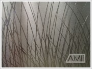 grafika steblá trávy3